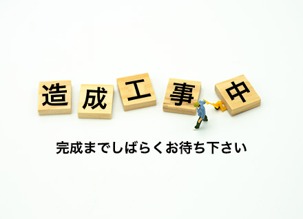 滋賀県守山市赤野井町 2区画(72.75坪〜) 写真